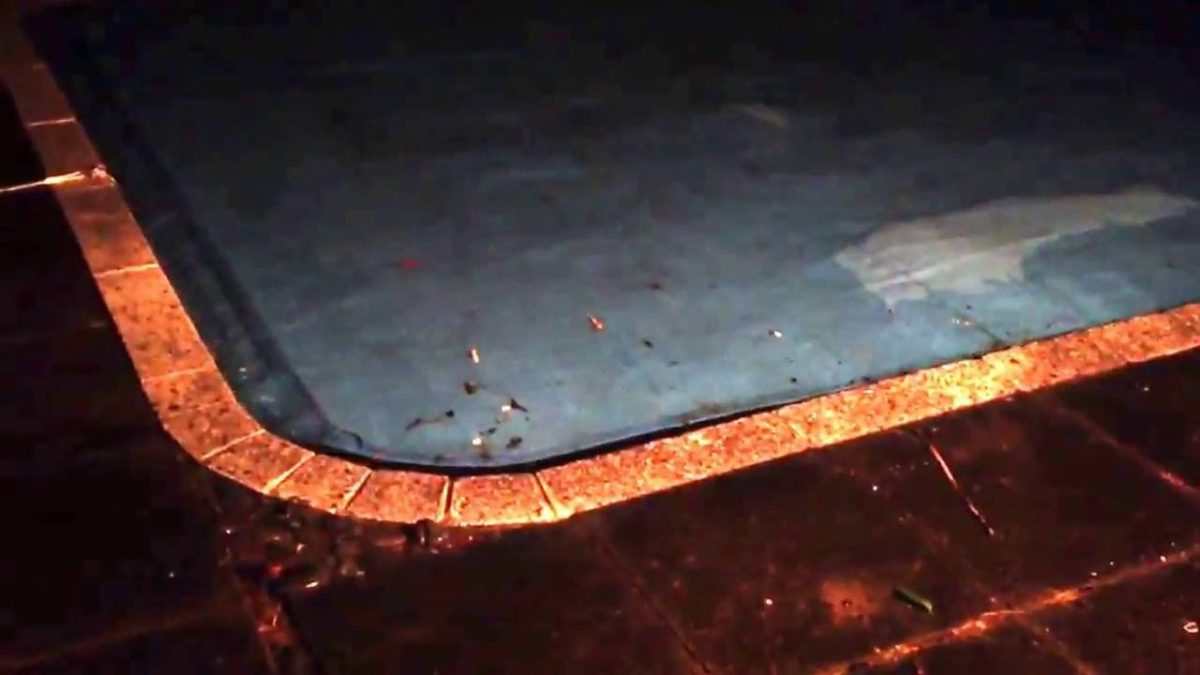 Swimming Pool Tsunami New Zealand Earthquake NOV. 13, 2016