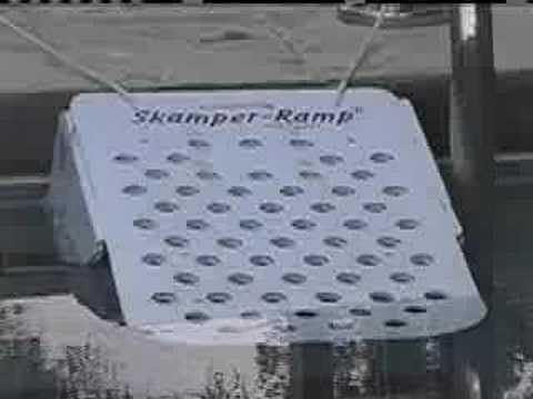 Skamper Ramp Swimming Pool Safety for Dogs and Cats